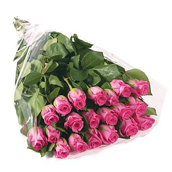 6145-20_pink_rose_gift_wrap